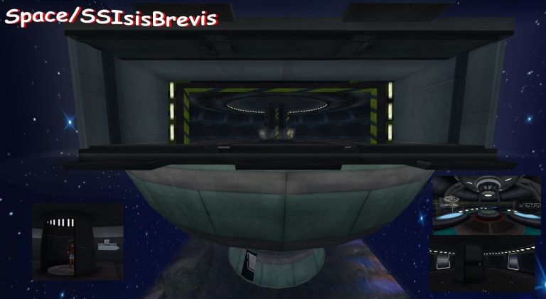 space-ssisisbrevis.jpg?w=768&h=421